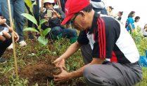 AWAS.COM Tanam 2.000 Anakan Pohon