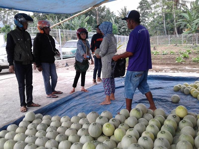 Manisnya Ngabuburit Di Pusat Buah Dan Pemancingan Ikan Nanga Woja