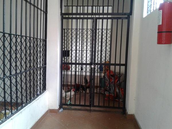 Sel Tahanan Polres Manggarai Jadi Kandang Ayam